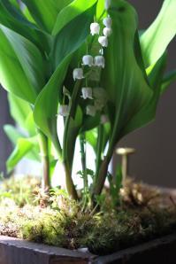 Photo from Gardenista