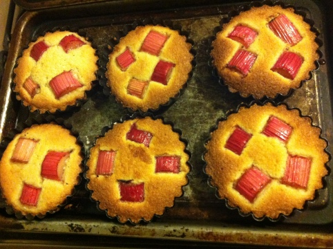French and Grace rhubarb and cassis tartlets baked by moi
